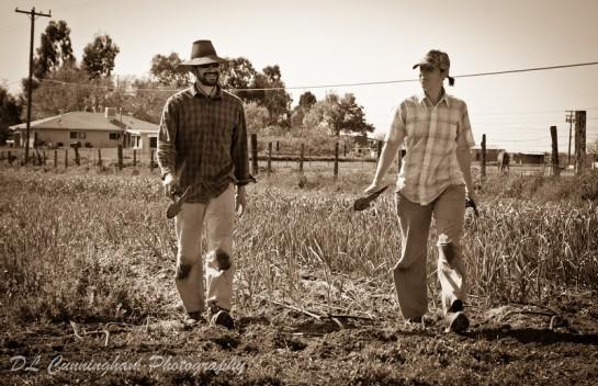 photo of Feeding Crane Farms by DL Cunningham